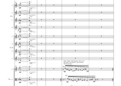 Konzert für Viola und Kammerorchester (2015)